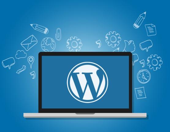 WordPress-Support und -Hilfe